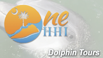 One HHI - Dolphin Tours